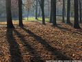 Tardo autunno ai giardini - Giardini Pubblici 1.